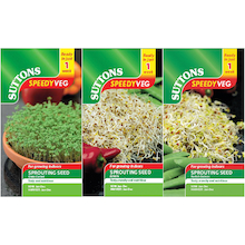 Seeds To Eat In 1 Week - 3pk  medium