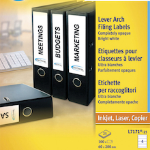Avery File Spine Labels 25pk  medium
