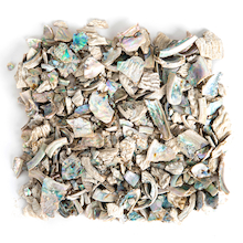 Abalone Shell Pieces 1kg  medium